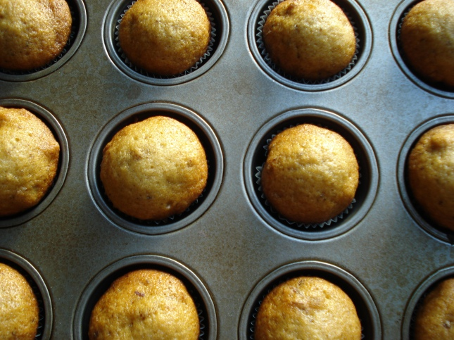 Date Muffins - fresh from the oven